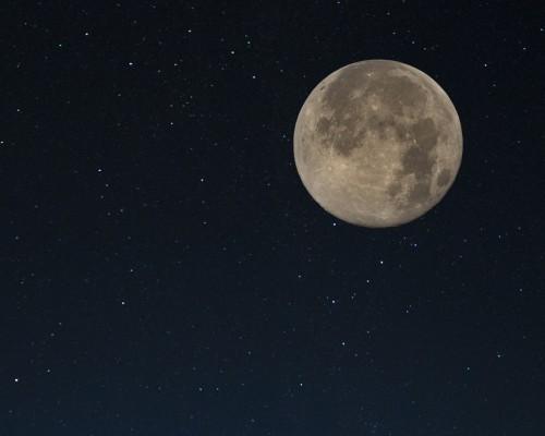 """ロマンティックな恋がしたい!「月が綺麗ですね」「死んでもいいわ」「831」など、""""I love you""""を意味する奥ゆかしい愛の言葉たち"""